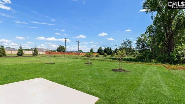 114 Rippling Way, Lugoff, SC 29078 (MLS #522624) :: Home Advantage Realty, LLC
