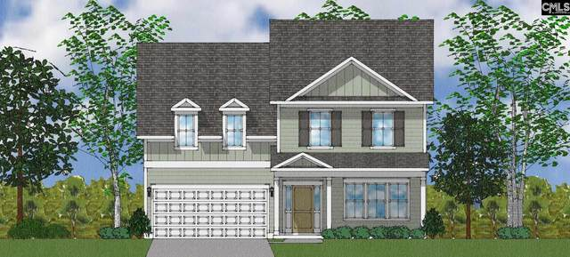 556 Harbour Pointe Drive, Columbia, SC 29229 (MLS #522684) :: The Latimore Group