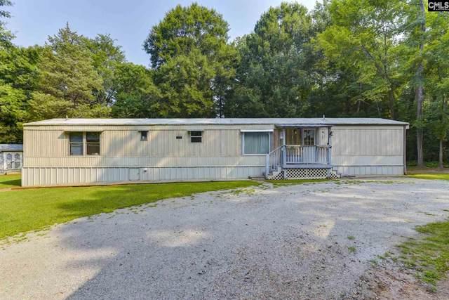 121 Joe Free Road, Chapin, SC 29036 (MLS #522802) :: The Neighborhood Company at Keller Williams Palmetto