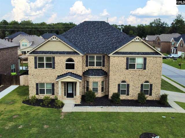 204 Cayden Court, Chapin, SC 29036 (MLS #523023) :: The Latimore Group