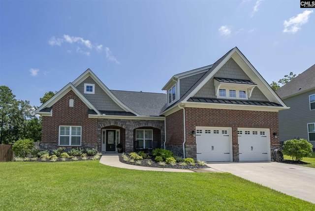 29 Mapleline Court, Chapin, SC 29036 (MLS #523049) :: Home Advantage Realty, LLC