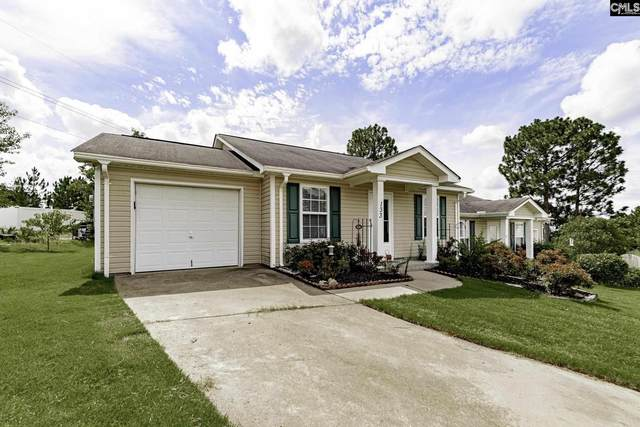 133 Linville Court, Lexington, SC 29073 (MLS #523080) :: Loveless & Yarborough Real Estate