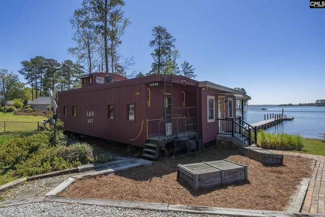 220 Will Wise Road, Chapin, SC 29036 (MLS #523107) :: Home Advantage Realty, LLC