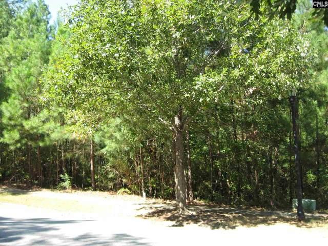 377 Woodlander Drive, Blythewood, SC 29016 (MLS #523279) :: The Meade Team