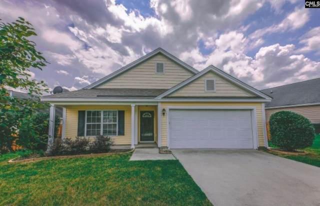 255 Richmond Farn Circle, Lexington, SC 29072 (MLS #523391) :: Disharoon Homes