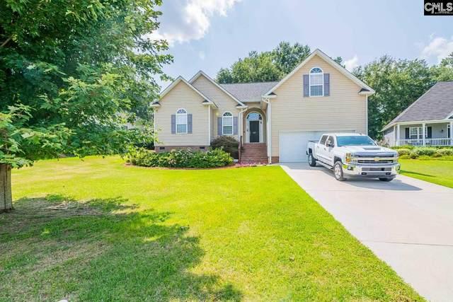 147 Viclynn Run, Lexington, SC 29073 (MLS #523430) :: Disharoon Homes
