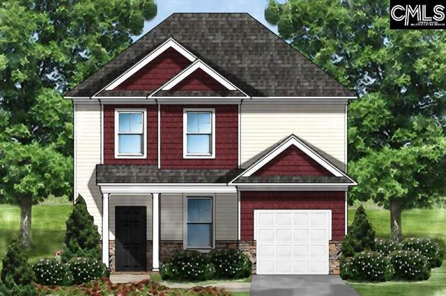 256 Drummond Way, Lexington, SC 29072 (MLS #523822) :: The Olivia Cooley Group at Keller Williams Realty