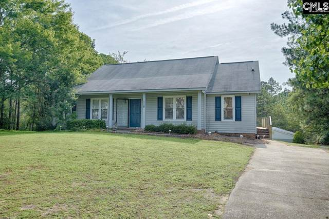 118 Excaliber Court, Gaston, SC 29053 (MLS #523833) :: Resource Realty Group