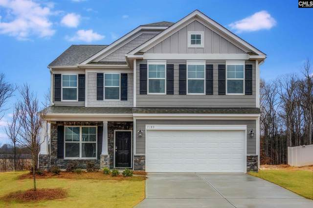 304 Brenthaven Drive, Chapin, SC 29036 (MLS #523873) :: EXIT Real Estate Consultants