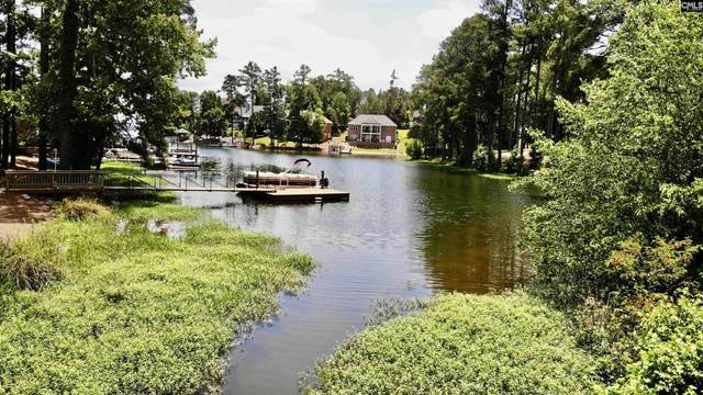 229 Bays End Court, Chapin, SC 29036 (MLS #524330) :: Metro Realty Group