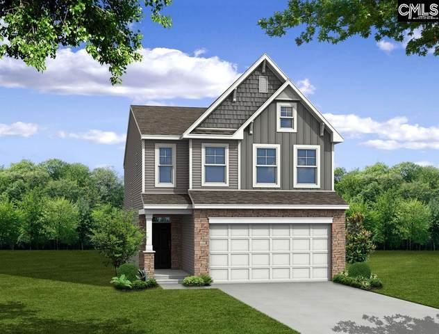 247 Lauralbrook Drive, Chapin, SC 29036 (MLS #524622) :: EXIT Real Estate Consultants