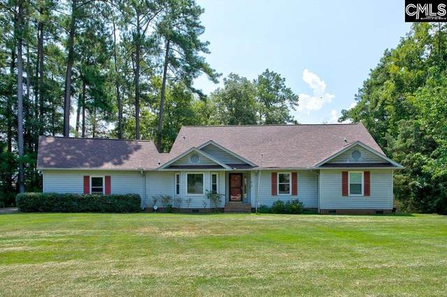 818 Silverpoint Road, Chapin, SC 29036 (MLS #524633) :: Metro Realty Group