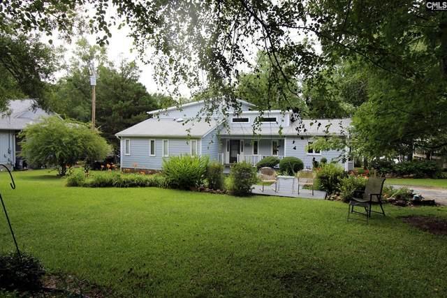 107 Dutch Point Road, Chapin, SC 29036 (MLS #524764) :: The Neighborhood Company at Keller Williams Palmetto