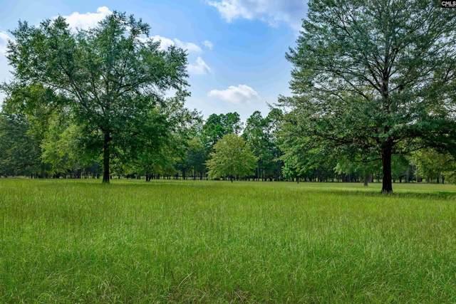 212 Peck Woods Road, Camden, SC 29021 (MLS #524815) :: NextHome Specialists