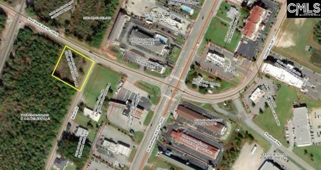 0 Red Bank Road, Orangeburg, SC 29118 (MLS #524942) :: The Meade Team