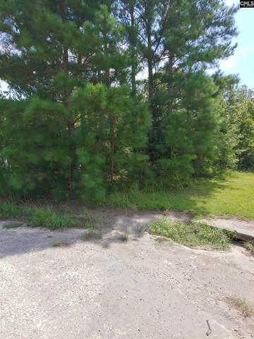 191 Sharon Church Road, Gaston, SC 29053 (MLS #525076) :: Metro Realty Group