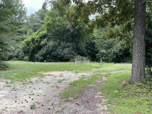 345 Old Chapin Road, Lexington, SC 29072 (MLS #525127) :: Resource Realty Group