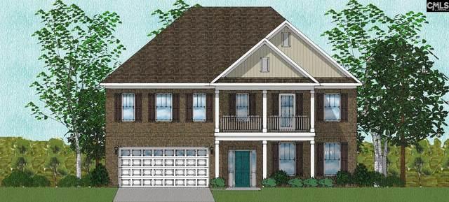 551 Malachite Lane, Chapin, SC 29036 (MLS #525285) :: Metro Realty Group