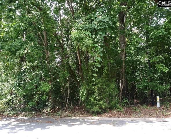 217 Corley Woods Drive, Lexington, SC 29072 (MLS #525337) :: The Meade Team