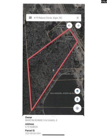 619 Rabon Circle, Elgin, SC 29045 (MLS #525394) :: EXIT Real Estate Consultants