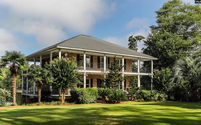1180 Hilton Point Road, Chapin, SC 29036 (MLS #525445) :: EXIT Real Estate Consultants