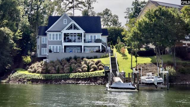 249 Pointe Overlook Drive, Chapin, SC 29036 (MLS #525650) :: NextHome Specialists
