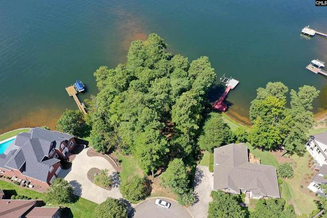 448 Lake Estate Drive, Chapin, SC 29036 (MLS #525655) :: NextHome Specialists