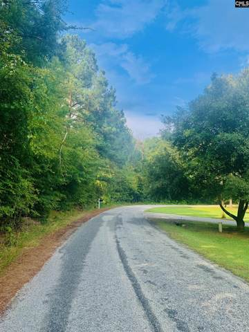 0 Doc Holloway Road, Chappells, SC 29037 (MLS #525743) :: The Olivia Cooley Group at Keller Williams Realty