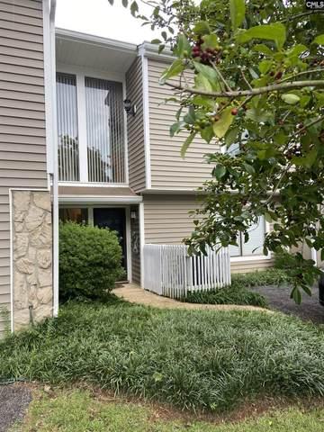 203 Shoreline Drive, Columbia, SC 29212 (MLS #525840) :: EXIT Real Estate Consultants