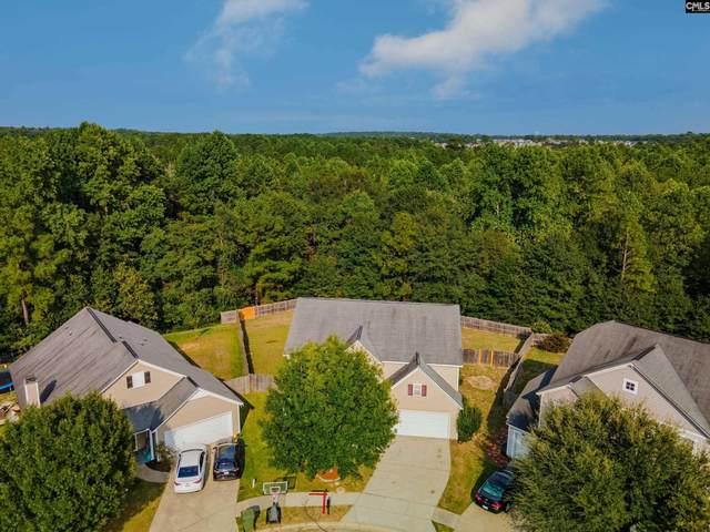 849 Wing Stripe Court, Columbia, SC 29229 (MLS #525999) :: Disharoon Homes