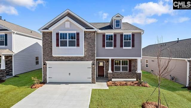 482 Stone Hollow Drive, Irmo, SC 29063 (MLS #526046) :: EXIT Real Estate Consultants