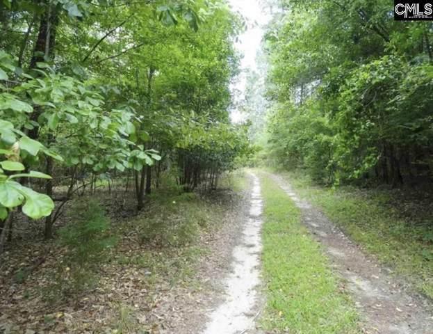 337 Big Hickory Lane, Gaston, SC 29053 (MLS #526214) :: Olivia Cooley Real Estate