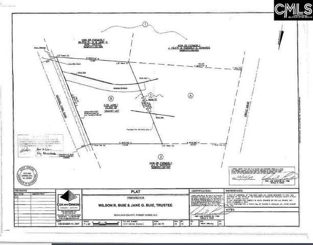 Satchelford Road B, Columbia, SC 29206 (MLS #526269) :: EXIT Real Estate Consultants