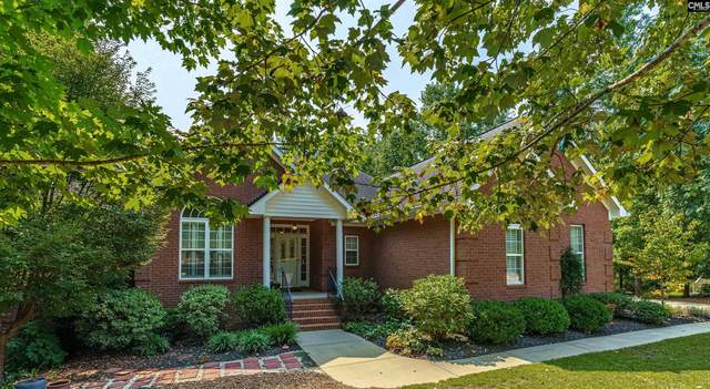 616 Lyngate Court, Lexington, SC 29072 (MLS #526345) :: EXIT Real Estate Consultants