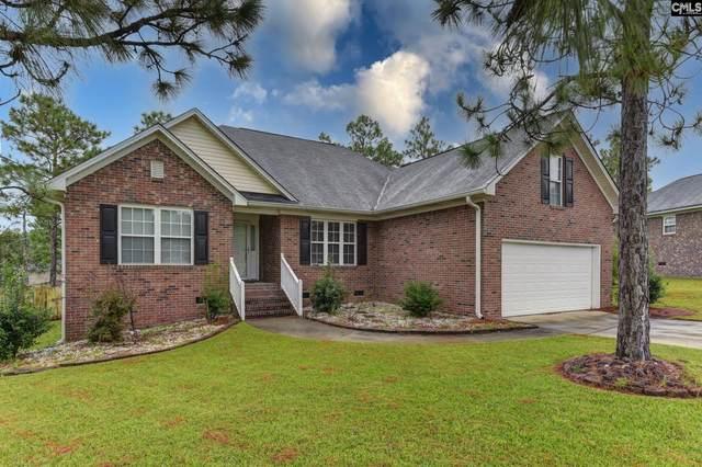 184 Oleander Mill Way, Columbia, SC 29229 (MLS #526503) :: EXIT Real Estate Consultants