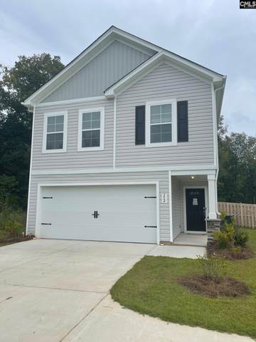 172 Bickley Manor Court, Chapin, SC 29036 (MLS #526606) :: The Shumpert Group