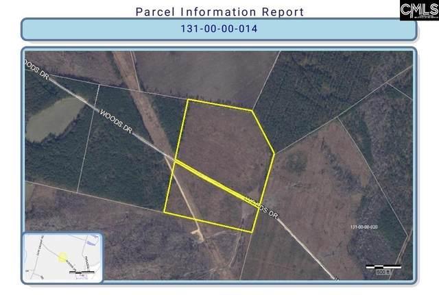 Woods Drive, Latta, SC 29565 (MLS #526633) :: EXIT Real Estate Consultants