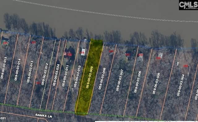00 Banks Lane #9, Swansea, SC 29160 (MLS #526675) :: EXIT Real Estate Consultants