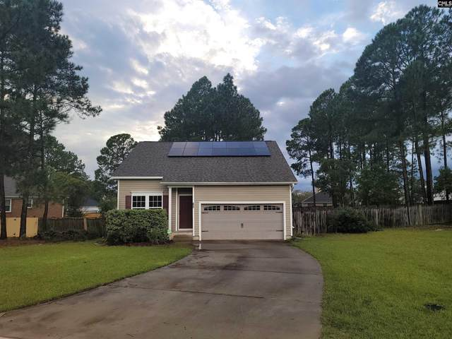 325 Huntcliff Drive, Columbia, SC 29229 (MLS #526774) :: The Olivia Cooley Group at Keller Williams Realty