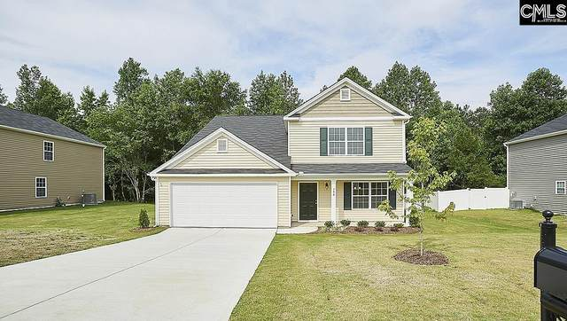 315 Throne Court, Chapin, SC 29036 (MLS #526815) :: Metro Realty Group