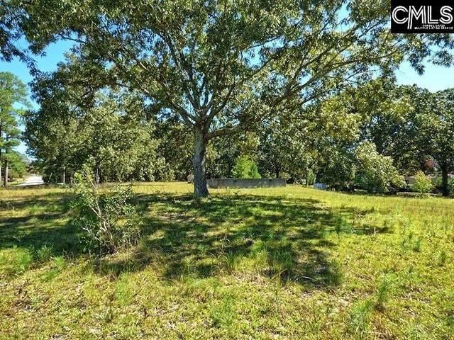 2533 Watson, Elgin, SC 29045 (MLS #526888) :: Loveless & Yarborough Real Estate