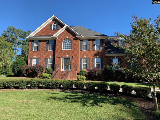 1 Clay Court, Chapin, SC 29036 (MLS #526996) :: EXIT Real Estate Consultants