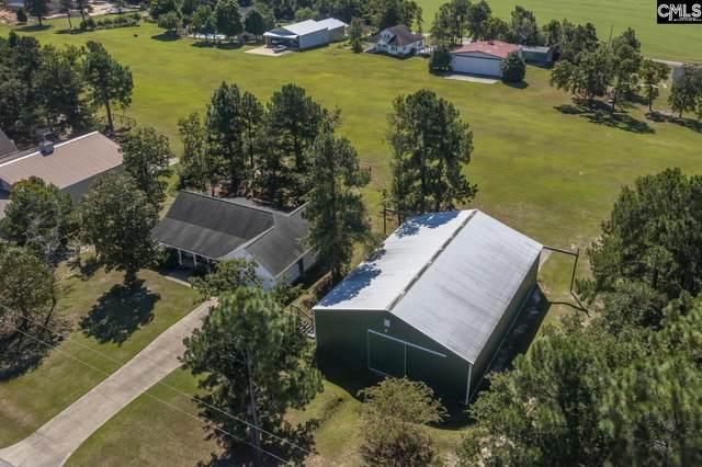 241 Upwind Leg Road, Gilbert, SC 29054 (MLS #527052) :: EXIT Real Estate Consultants