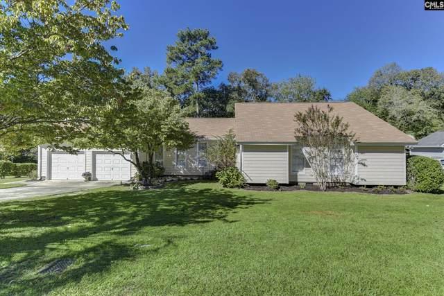 313 S Shields Road, Columbia, SC 29223 (MLS #527069) :: Yip Premier Real Estate LLC