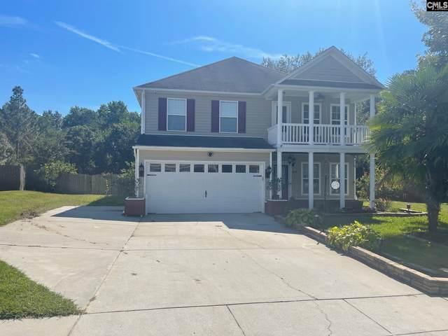 234 Sepia Court, Columbia, SC 29229 (MLS #527073) :: Yip Premier Real Estate LLC