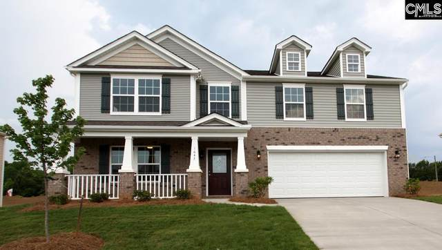 462 Stone Hollow Drive, Irmo, SC 29063 (MLS #527101) :: EXIT Real Estate Consultants