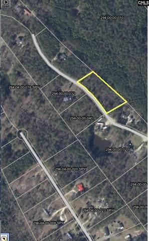 1099 Aarons Way, Lugoff, SC 29078 (MLS #527131) :: Olivia Cooley Real Estate
