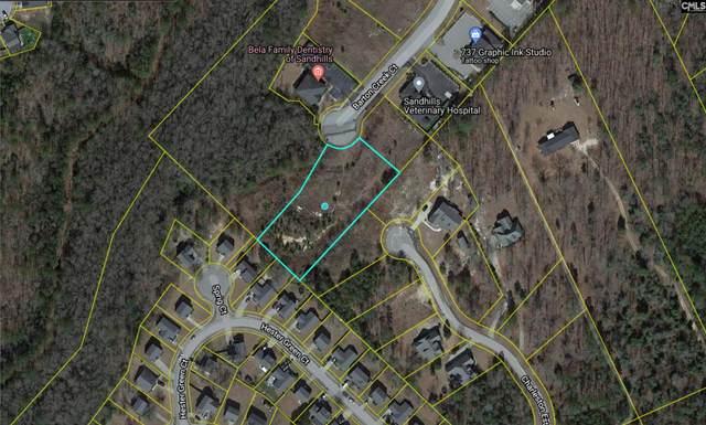 133 Barton Creek Court, Columbia, SC 29229 (MLS #527292) :: EXIT Real Estate Consultants