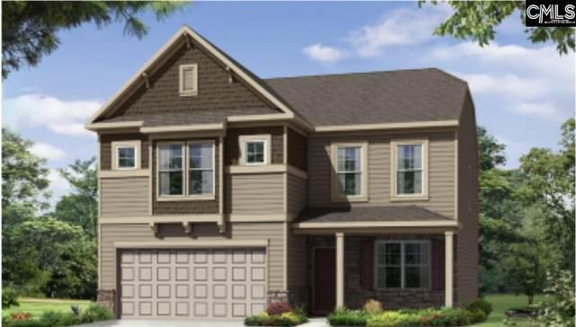 243 Laurelbrook Drive, Chapin, SC 29036 (MLS #527602) :: EXIT Real Estate Consultants