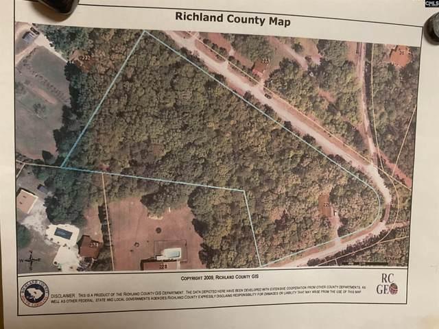 226 Joe Free Road, Chapin, SC 29036 (MLS #528056) :: Loveless & Yarborough Real Estate